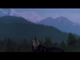 White Fang 1991 Movie - Jack London