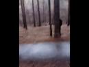Кузай гоняет правых по лесу[Лесной Дух]