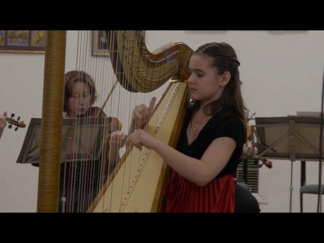 Елизавета Воробьёва (арфа) и камерный оркестр