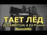 Грибы - Тает Лёд (Dj GAMBIT(UA) & Ed Prymon RemashMix)