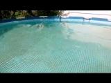 ---Чистим бассейн перекисью водорода.Миф-