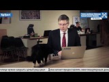 Cat interrupts news broadcast by the Mayor of Riga Nils Usakovs
