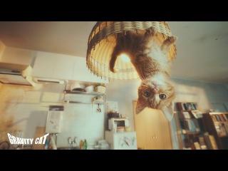 #重力猫『GRAVITY CAT / 重力的眩暈子猫編』presented by GRAVITY DAZE 2