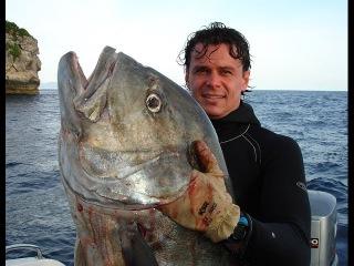 Подводная Охота в Египте / Запрещенная Охота на острове Тиран