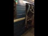 Взрывы в питерском метро. Кадры с места трагедии