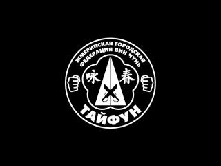 Промо-ролик Жмеринской городской федерации Вин Чунь - ТАЙФУН