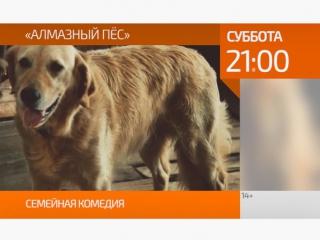 Кино на ТВ21: Алмазный пёс