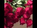 Собираем 101 Голландскую Розу