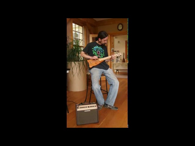 Timber: the Electric Bass by Magic Fluke, demo by Mike