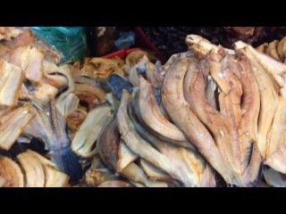 Asian Street Food 2016- Street Food Video  & Best Street Food Compilation 15