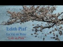 French Song La Vie en Rose by Edith Piaf Slow Reading