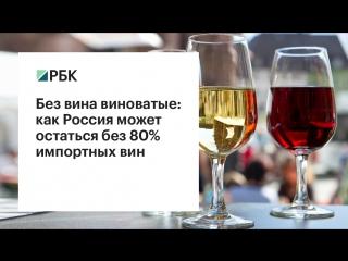 Без вина виноватые: как Россия может лишиться 80% импортных вин