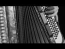 КАВКАЗ Красивый клип Adiga Sheshan