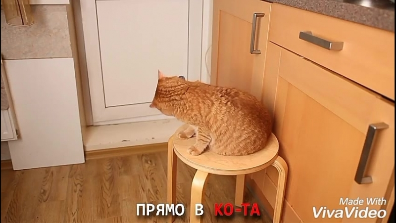 Новая песня Брайна Мапса)