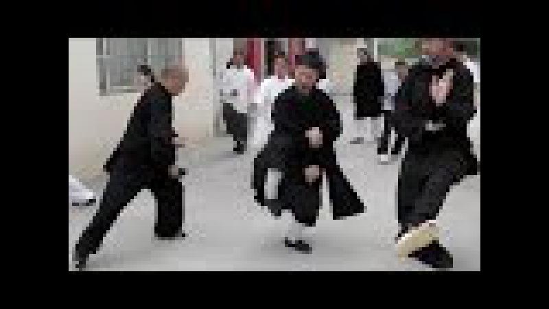 Training with Master Zhong Yun Long - Wudang Sanfeng Pai