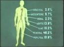 Хирургия артерий конечностей © embolism main arteries of the extremitie