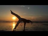 Capoeira - Tutorial Macaco em p