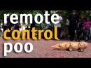 WaterAid presents The remote control poo