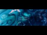 Robot Koch - Heart as a River (official video)