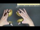 Zil practice! Практика с сагатами 2: Standart pattern (Стандартный рисунок) ENG Subtitles