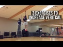 3 Exercises To Help You Jump Higher The Lost Breed