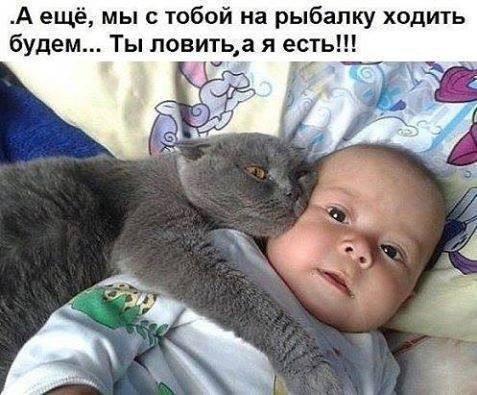 https://pp.vk.me/c604726/v604726349/72ff/2x_xT5Diojs.jpg