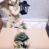 Флористика.Декор.Стабилизированные цветы