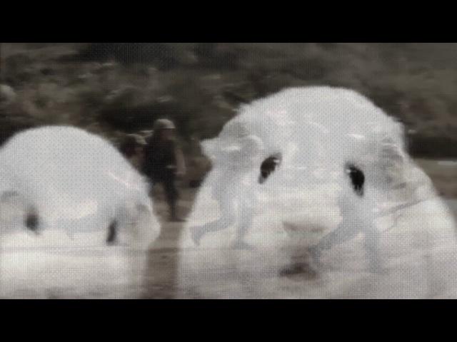Guinea Pig Vietnam Flashback