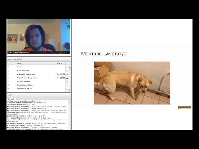Ветеринарная неврология на основании клинических примеров. Лектор Андрей Албул