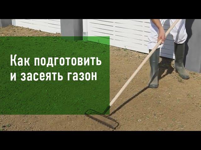 Газон своими руками – как правильно подготовить и засеять газон – Леруа Мерлен