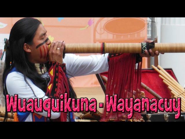 Wuauquikuna - Wayanacuy 26.05.2013