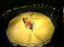 Бои без правил Первый чемпионат мира 1995 год Часть1 ,jb ,tp ghfdbk gthdsq xtvgbjyfn vbhf 1995 ujl xfcnm1