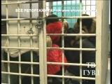 Чёрные проститутки Урала