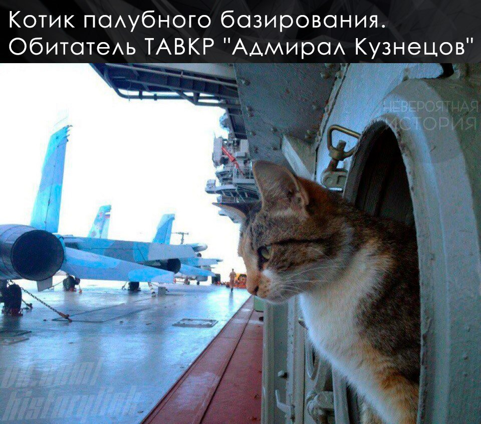 «Адмирал Кузнецов» идёт домой из Сирии.