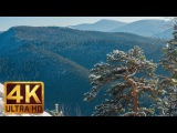 Winter in the Carpathians - 4K Relaxation Video &amp Soothing Music Carpathian Mountains in Ukraine
