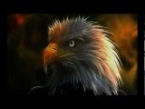 Medwyn Goodall Eagle Spirit