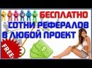 Kaleostra приглашение рефералов, раскрутка соцсетей Вк, Фейсбук, Ютуб