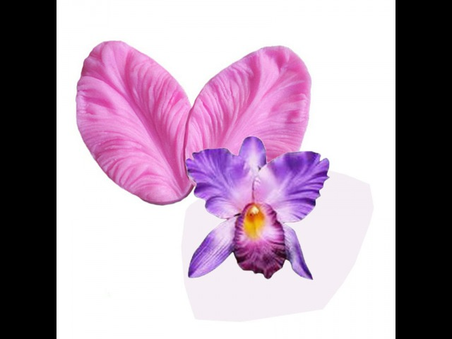 Como Realizar una Orquidea Cattleya - Hogar Tv por Juan Gonzalo Angel