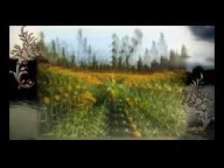 4 Владимир Мегре Книга 4 Сотворение Звенящие кедры России