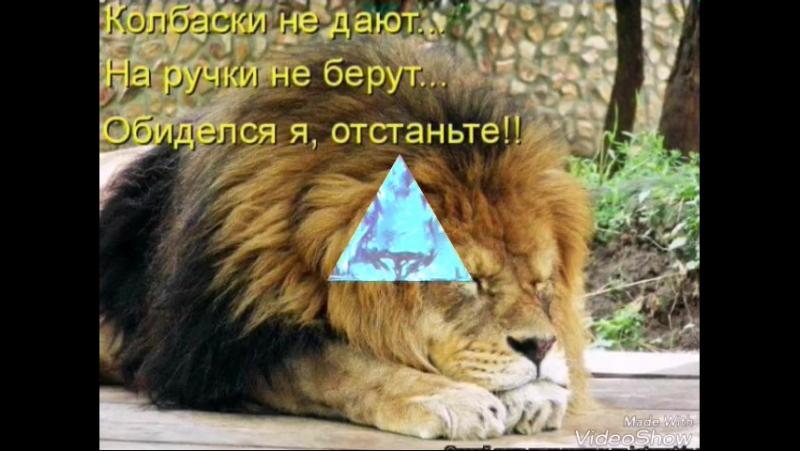 бережіть левів