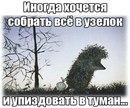 Aleksandr Daniliuk фото #46