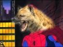 Человек паук возрождает веру в основную информацию RYTP