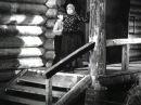 Боевой киносборник № 6 / Пир в Жирмунке (1941)