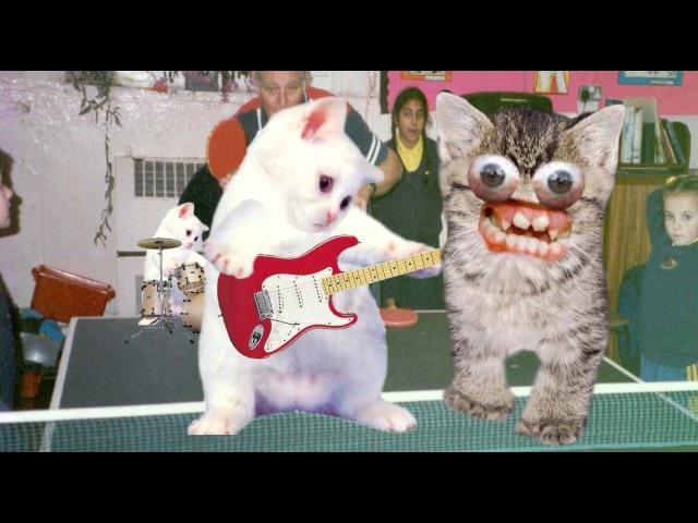 Sweary Kittens sing McLusky - Lightsabre Cocksucking Blues