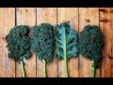 Листова капуста (кейл, кале, кучерявая, kale)