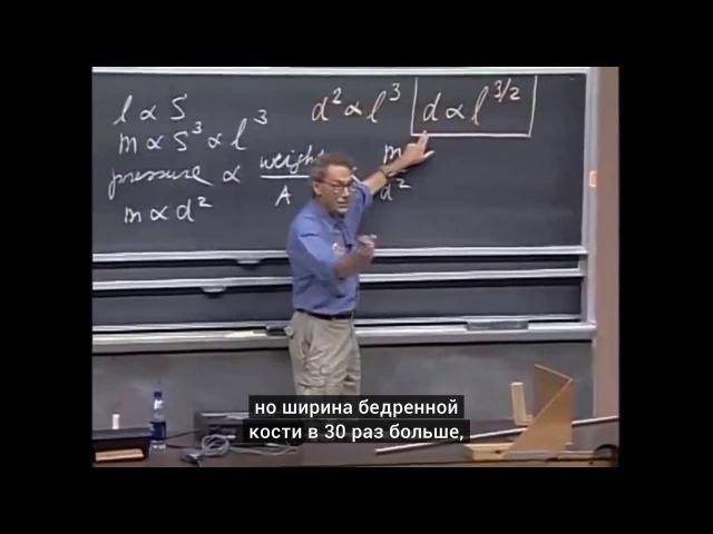 [МИТ | MIT] 8.01x | Лекция 1 | Измерения пространства и времени [КУРСОМИР | KURSOMIR]