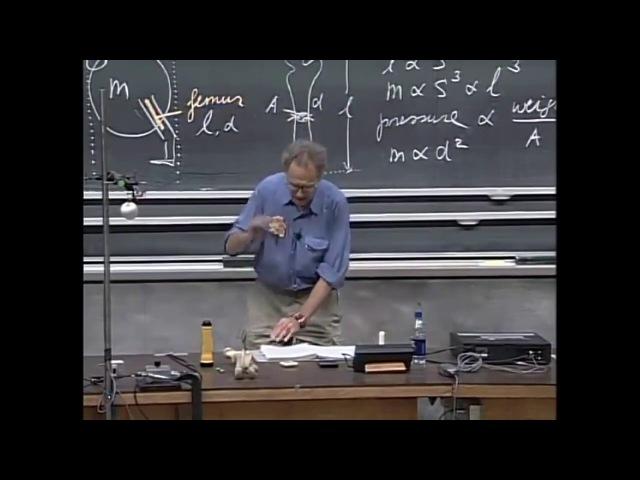 [МИТ | MIT] 8.01x | Лекция 1 | Измерения пространства и времени (озвучка) [КУРСОМИР | KURSOMIR]