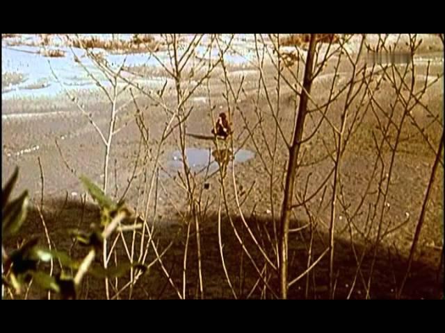 Alexandra - Ich liebe dich (Ja lublu tebja) 1967