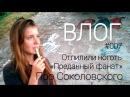 Влог 007: Отпилили ноготь, про Соколовского и Симонова, Преданный фанат и ЗОЖ ★ Лайкфаков