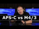 APS-C vs Micro Four Thirds Which Produces a Better Quality Image, APS-C Crop Sensors or M43